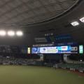 福良監督 CS進出消滅も「チャンスあるんだから」とT-岡田に本塁打王獲得を促す!