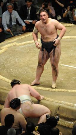 大相撲次の昇進力士を考える【横綱編】