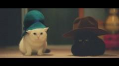 猫専用通信講座が爆誕!? 「ねこ勉〜Cats Learning〜」公開