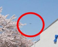 京都の空にUMAが飛来!? カメラがモスマンの影を捉えた!!