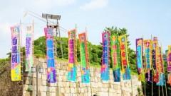 """大相撲九州場所""""大荒れ""""で勃発した史上最低の年間最多勝争い"""