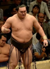 一部相撲ファンに蔓延る複数の悪質行為 再考の余地があるのでは?