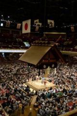 大相撲のインターネット中継が有料化 あなたなら、いくら払う?
