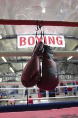 就活生、「現実に引き戻される」…ボクシングダブル世界戦で何があった?