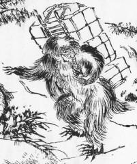 日本に生息していた雪男?「異獣」