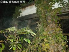東北最凶の心霊スポット 岩手県遠野の恐怖山伏屋敷に潜入
