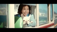 草なぎの愛犬、竹内結子と単独CM共演!週刊誌スクープで有名になり、SNSでも人気