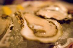 生に鍋にフライに! 牡蠣の栄養と食中毒の危険性
