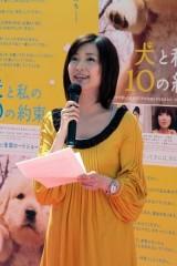 NEWS23視聴率微妙でも降板できない小川彩佳の隠れた功績