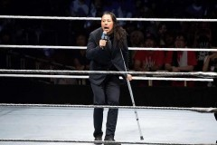 WWE東京公演第1弾カード&追加選手発表! 中邑真輔、カブキ・ウォリアーズ凱旋