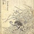 道具街の名前の由来にもなった、河童寺こと曹源寺にまつわる逸話