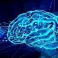 エンジニアの男性、左脳がないまま育ち気づかずに60年過ごす 「人体の不思議」に驚きの声殺到