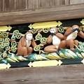 予言、そして削られた猿…日光東照宮「三猿」にまつわるミステリー