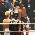 ヒクソン・カレリン・メイウェザー〜平成の日本格闘技界に来襲した3人の男たち〜