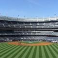 3日で62万人! 年々増えるプロ野球観客動員数、広島・DeNAが100万人以上増加した理由とは