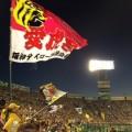 阪神、オープン戦勝ち星ナシでも決断できない矢野監督のつらい事情