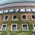 近隣住民からの苦情も 選抜高校野球決勝に進出の習志野高校、「応援がうるさい」と批判され物議
