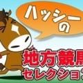ハッシーの地方競馬セレクション(1/24)「第21回TCK女王盃(JpnIII)」(大井)